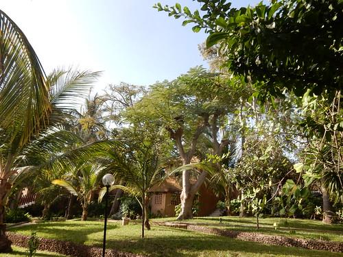 Garden, Hotel Jardin Savana