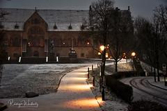 Kaiserpfalz (r.wacknitz) Tags: kaiserpfalz goslar harz schnee winter wintermood nightphotography nikond750 nikkor niedersachsen weg beleuchtung baum historic gebäude snowy