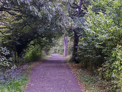 secret path (grannie annie taggs) Tags: kew path mystery