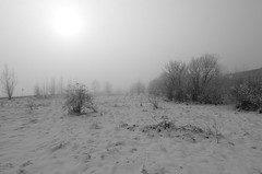 White desert (Baubec Izzet) Tags: baubecizzet pentax landscape winter snow light fog