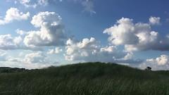 Sky (Area Bridges) Tags: 2017 august 201708 20170805 sky beach milfordct ct milford connecticut silversandsstatepark dune grass clouds blue