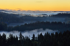 Foggy morning landscape (Digikuvaaja) Tags: finland autumn backdrop background beautiful blue cloudy colorful dark dawn environment fall fantasy fog foggy forest glowing landscape light mist misty moody morning mystery natural nature orange outdoor rural scene scenery scenic season shadow silhouette sunrise tranquil tree twilight valley vibrant weather woods