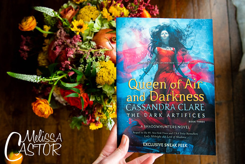 Cassandra Clare book fan photo