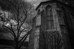Winter is a Cold Witch (writing with light 2422 (Not Pro)) Tags: abbey thecloisters newyork nyc blackandwhite bw monochrome tree stark masculine lines gothic windows stone metropolitanmuseumofart hudsonriver forttryonpark manhattan thepatientgothicchisel richborder drama contrast moody sonya7riii variotessartfe42470