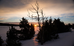 Winter sunrise (Eklandet) Tags: nature sverige sweden samsung sky scandinavia nordic countries naturephotography landscape fineartphotography landscapephotography naturelover winterscape winter cold snow ice frost sunrise