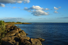 A bit of Florida coastline (Loopodude) Tags: coastline gulfcoast gulfofmexico water clouds sky nature organic growth life fortislandgulfbeach crystalriver florida canont5 canonefs24mmf28
