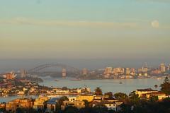 Full moon morning (bloodpuddle) Tags: morning moon operahouse skyline australia sydney