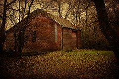 Machine Shed (Dave Linscheid) Tags: farm country rural agriculture tree grass wood texture textured picmonkey watonwancounty mn minnesota usa