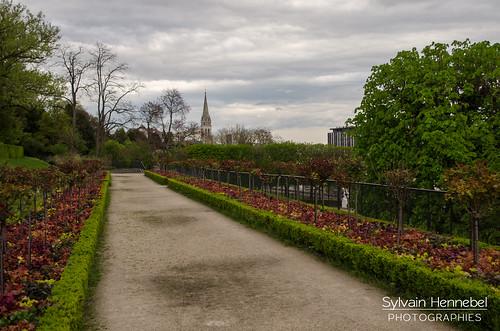 Allée fleurie du parc de Saint-Cloud
