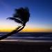 Sunrise - Mission Beach