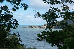 South West Coast Path - Ilfracombe to Combe Martin (Spannarama) Tags: coastpath southwestcoastpath blueskies sunshine clouds coast sea northdevon devon uk trees framed lookingthrough