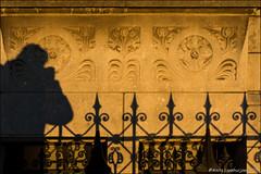 Shadow selfie (Ciao Anita!) Tags: denhaag thehague laja nederland olanda netherlands hek cancello fence schaduw ombra shadow avondzon soleserale eveningsun friends hm supershot theperfectphotographer