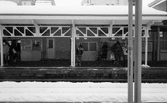 img804FLICKR (Far East Shutter) Tags: rail station snow train leica cl summicron40 trix winter cold platform