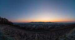 Mont aigu (ZeGaby) Tags: champagne irix15mm landscape naturephotography panorama paysage paysagedechampagne pentaxk1 sunrise vignobles vineyards avenayvaldor marne france fr