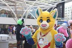 IMG_8958 (South Kitsune) Tags: fursuit furries furcon costumes cosplays caliur furry fandom