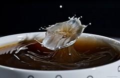 Cup of black coffee with a few drops of milk (CHWVB) Tags: tropfenfotografie highspeed drop tat splash macro morning drink cup aroma white weis schwarz kaffee milch tropfen dropondrop milk black coffee brew macromondays hochgeschwindigkeit gotas