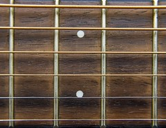 Dots and Stripes - [MacroMondays_20181126] (Arranion) Tags: macromondays dotsandstripes macro closeup guitar fret fretboard