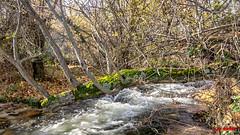 2018_11_27-3 (jrgenet) Tags: manzanareselreal ríomanzanares river naturaleza paisaje comunidaddemadrid spain españa