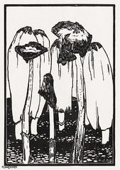 Ink mushrooms (1915) by Julie de Graag (1877-1924). Original from the Rijks Museum. Digitally enhanced by rawpixel (Free Public Domain Illustrations by rawpixel) Tags: antique art artwork bloom botanical botany drawing growing handdrawn illustrated illustration inkmushroom juliedegraag mushroom natural nature old pdrijks plant publicdomain rijksmuseum sketch vegetable vintage woodcut