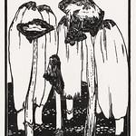 Ink mushrooms (1915) by Julie de Graag (1877-1924). Original from the Rijks Museum. Digitally enhanced by rawpixel thumbnail