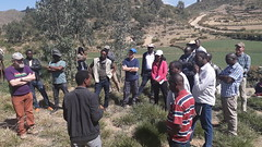 Steering Committee Meeting Field Visit in Ethiopia