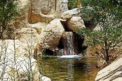 Водопадик (lvv1937) Tags: вода камни растения тунис exploré мыизяфа