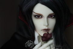 Dangerously Charming (redmaiko) Tags: fairyland chicline msd rou vampire dracula rose pale doll bjd