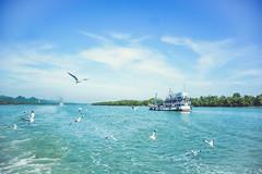 Saint Martin's Island Part 2 (pritam.nandy) Tags: island bangladesh beautiful nikon dslr landscape seabeach sea ocean ship bird water blue green lightroom edit photography photo photographer photos