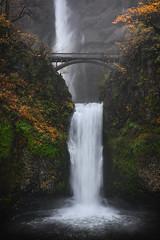 Multnomah Falls (Mark McLeod 80) Tags: 2018 autumn columbiarovergorge markmcleod markmcleodphotography mounthood multnomahfalls oregon fall forest green landscape
