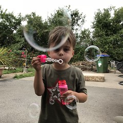 Forever Blowing Bubblea (firehouse.ie) Tags: 2018 summer playtime play funtime funny funniest fun playing blowing bubbles bubble