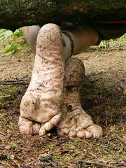 At home in the forest (Barefoot Adventurer) Tags: barefoot barefooting barefoothiking barefooter barefeet barefooted baresoles barfuss footmassage flexiblefeet forest freedom pineneedles toughsoles texture connected callousedsoles callouses woodlandsoles wrinkledsoles ruggedsoles roughsoles toes tough happyfeet healthyfeet heelcracks hardsoles strongfeet stainedsoles forestwalk naturalsoles naturallytough nature