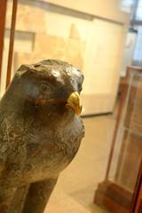 Chicago, IL - University of Chicago - Oriental Institute - Egyptian - Statue of Horus (jrozwado) Tags: northamerica usa illinois chicago universityofchicago university museum orientalinstitute middleeast neareast history archaeology egyptian statue horus falcon bird