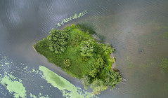Green Island (milfodd) Tags: july 2018 imagecompositeeditor aerialphotography quadcopter dji drone phantom4pro island