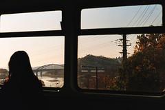 .I really hope. (Camila Guerreiro) Tags: film kiev pentaxmesuper portra 800 seoul camilaguerreiro southkorea analog grain