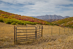 Gated Mountain Pasture (Brad Prudhon) Tags: 2018 cottonwoodcampground fall nephi september utah autumn colors fence gate landscape mountains pasture scenic