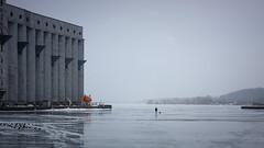 Early Riser (Bert CR) Tags: earlyriser canon40d harbour icefishing gloomy solitude winter ice iceandsnow fishing grainelevator