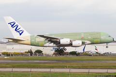 All Nippon Airways Airbus A380-841 cn 263 F-WWAF // JA382A (Clément Alloing - CAphotography) Tags: all nippon airways airbus a380841 cn 263 fwwaf ja382a toulouse airport aeroport airplane aircraft flight test canon 100400 spotting tls lfbo aeropuerto blagnac aeroplane engine sky ground take off landing 1d mark iv avgeek avgeeks planespotter spotter
