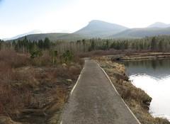 Lily Lake (Kimberly Dickinson) Tags: colorado lilylake rockymountainnationalpark landscape scenery nature beauty lake mountains