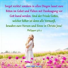 Philipper 4,6-7 (bibel online) Tags: zeugnis weisheit anmut bibel glauben evangelium predigen herr christus gott jesus christian leben endtimes liebe heil fotodestages gottistgut amen anbetung schrift