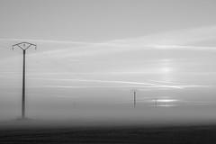 Dans la brume
