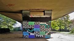 Digii5 & Hipsterskulls / Anderlecht - 2 nov 2018 (Ferdinand 'Ferre' Feys) Tags: neerpede bxl brussels bruxelles brussel belgium belgique belgië streetart artdelarue graffitiart graffiti graff urbanart urbanarte arteurbano ferdinandfeys bestof2018be