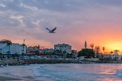 wonderful sunset and beautiful place  #saida #sunset (Ayman Zarif) Tags: lebanon nikon sunsetview saida sunset