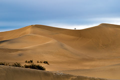 A Dune With a View (TierraCosmos) Tags: sand sanddunes mesquiteflat california desert deathvalley deathvalleynationalpark landscape togetherness