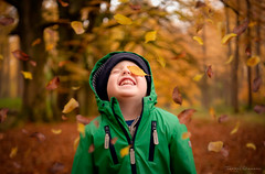 Autumn Fun (Fergal Gleeson) Tags: autumn children color colors countryside exploring fall foliage ireland landscape leaves nature outdoor outdoors photography ruin scenery scenic season trees walk walking woodland