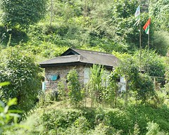 Dwelling in Pelling (Nagarjun) Tags: pelling sikkim northeastindia greenery nature village walk ruralindia nepali