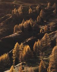 South Tyrol (the-wanderlust) Tags: journey landscape landscapes uncategorized wanderlust
