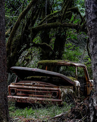 Rust in Peace (Brendinni) Tags: htt abandoned happytruckthursday truck moss trees green red rust washington nature outside