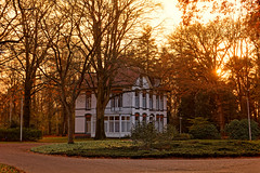 White House In The Sun (Alfred Grupstra) Tags: tree architecture outdoors autumn parkmanmadespace nature buildingexterior builtstructure nopeople house urbanscene grass city colorimage whitehouse sun