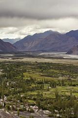 IMG_6553 (bhopi.tushar) Tags: leh ladakh mountains pangong lake diskit monastery