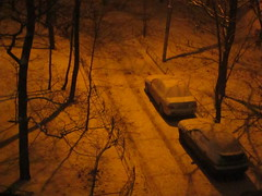 wintry night (VERUSHKA4) Tags: canon europe russia moscow city night light cityscape car neve nature snow yard outdoor fence metallicobject tree branch trunk season winter wintertime autumn november nocturne nacht ville vue view street shadow shade bough track path object two